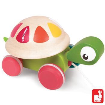 janodschildpad