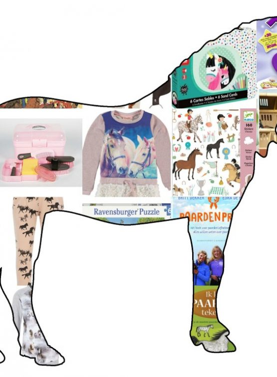 cadeaus paardenmeisjes