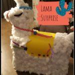Leuks voor Lama liefhebbers